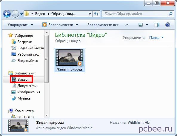 образцы форматов видео